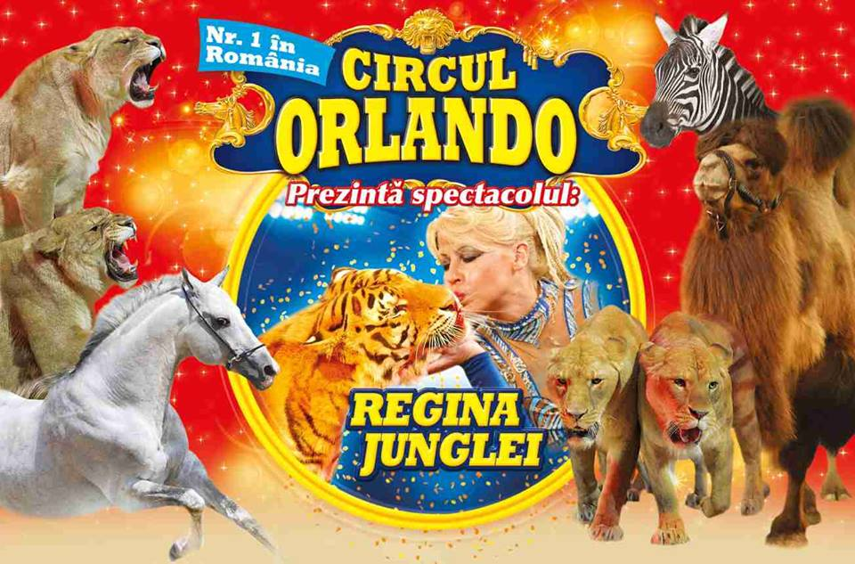 CIRCUL ORLANDO IN PARCAREA ARENA MALL: 28 sept - 04 oct