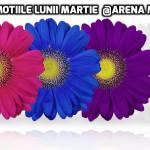 PROMOTIILE-LUNII-MARTIE-2017